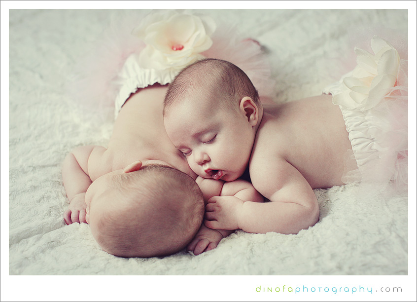 Newborn Twins | Dinofa Photography | South Jersey Weddings