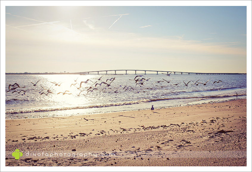 New Jersey Beach Photo bumpity bump | desiree+tim+baby bump