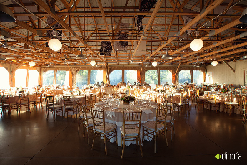 pennsylvania barn wedding reception free as a bird | nikki+kevin