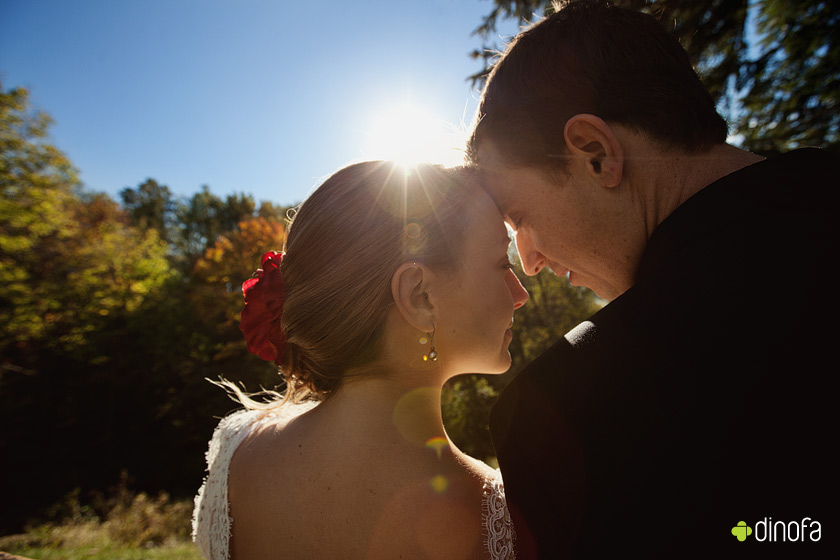 pennsylvania outdoor fall wedding portraits free as a bird | nikki+kevin
