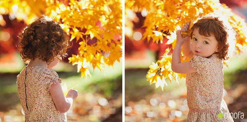 unique new jersey child photographers red leaves & red curls | lily